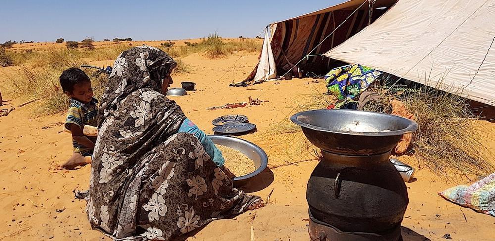 Nomades et pasteurs ... Mauritanie, terre de nomadisme