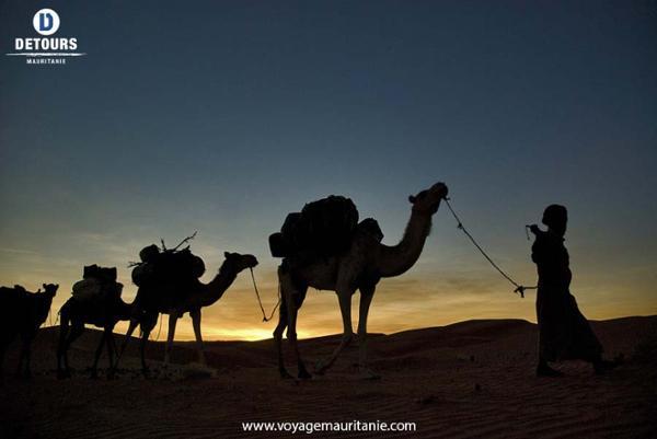 Grands voyages Sahariens