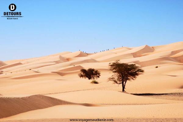 Récit Méharée De Chinguetti Au Banc Darguin Détours Mauritanie